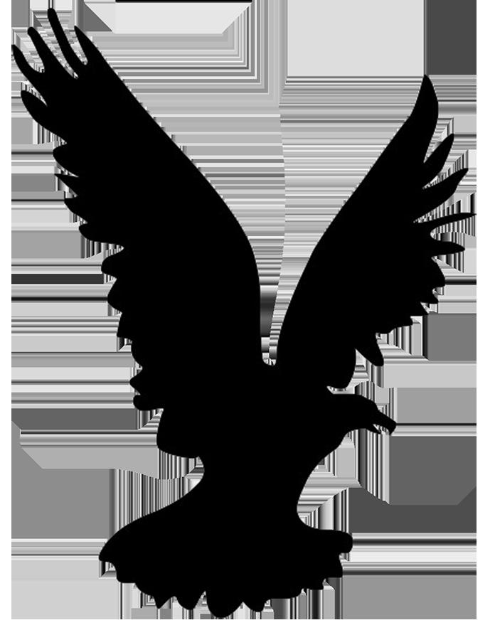 Bald Eagle Bird Silhouette Clip art  Eagle Silhouette