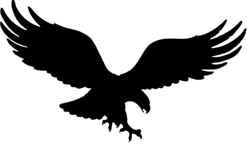 Bald Eagle Golden eagle Tattoo Black eagle  winged eagle