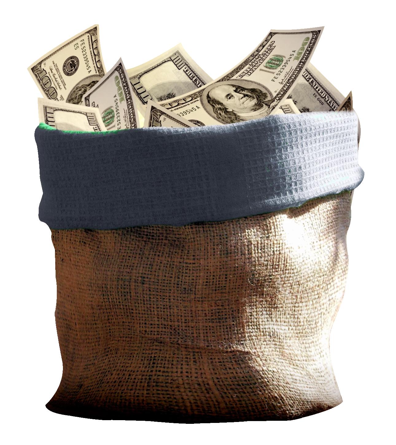 Money Bag PNG Image - PngPix - Cash Money Bag