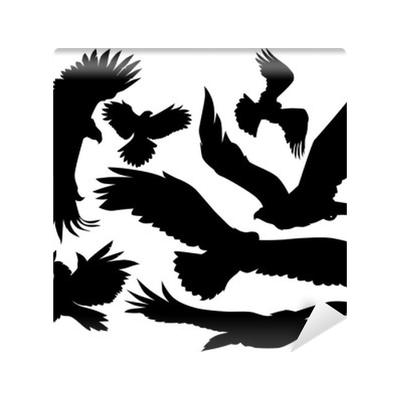 eagles vector silhouette Wall Mural  Pixers  We live to