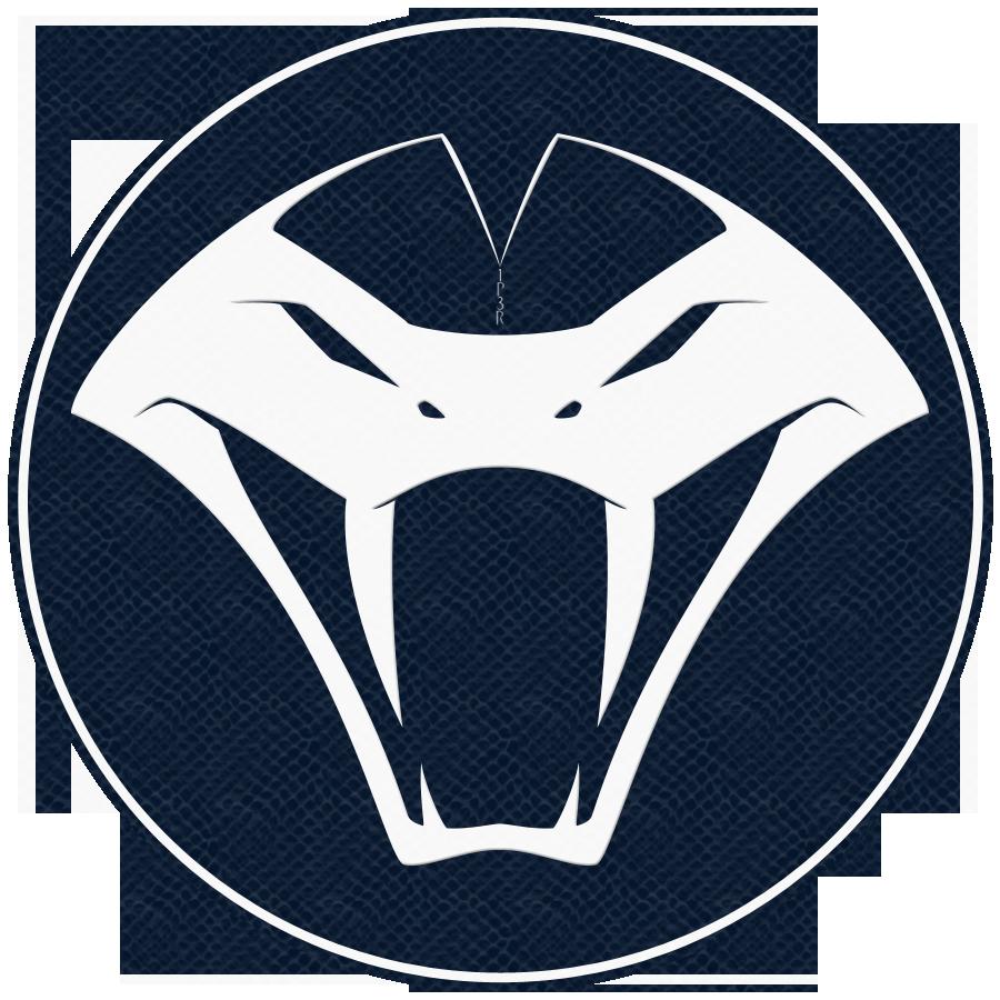 Discord Logos  Leaguegaming  Your Virtual Career