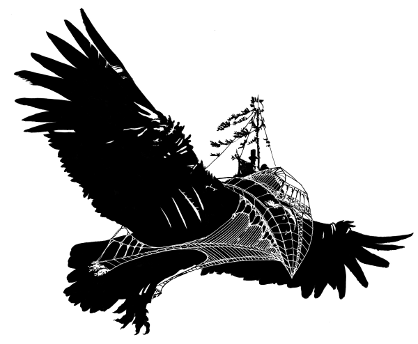 Eagle Beak Feather Silhouette  Parrot pirate png download