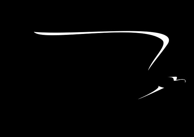 Free photo Design Sign Animal Eagle Symbol Silhouette Bird