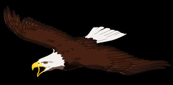 Landing Eagle Clip Art  ClipArt Best