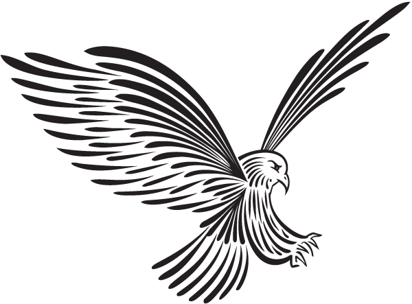 Eagle Landing Drawing  Free download on ClipArtMag
