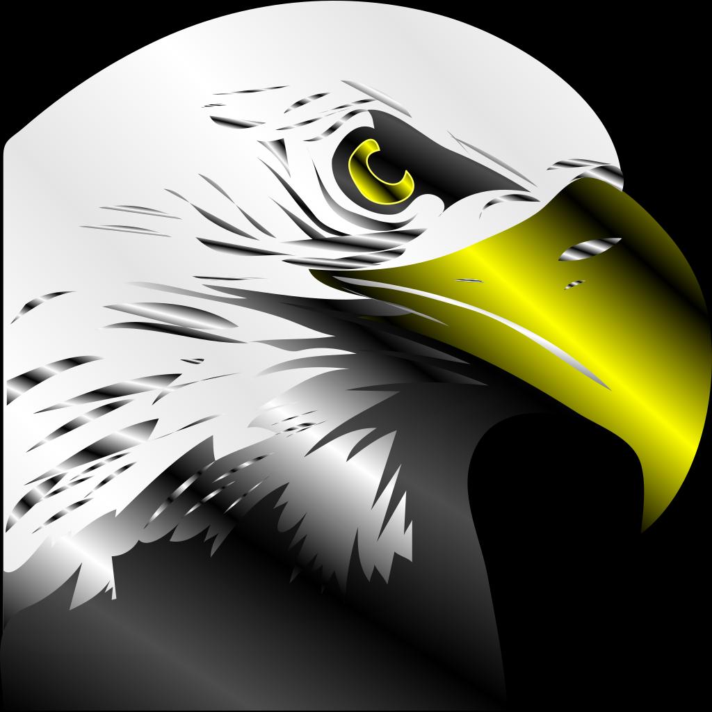 Bald Eagle PNG SVG Clip art for Web  Download Clip Art