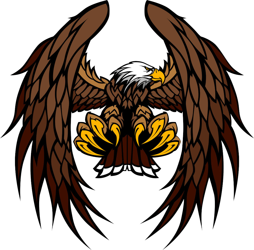 Eagle Vector Free Download at GetDrawings  Free download