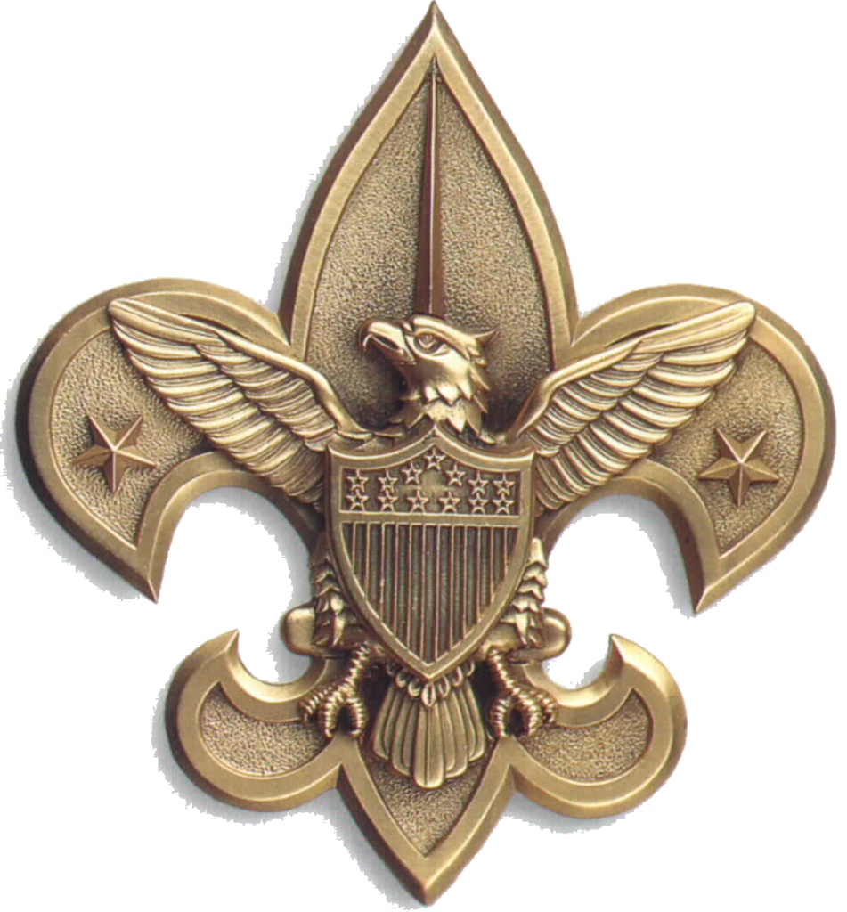 Central Florida Council Eagle Scout Scouting Boy Scouts of