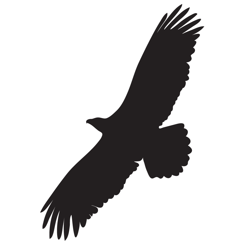 Buzzard Silhouette at GetDrawings  Free download