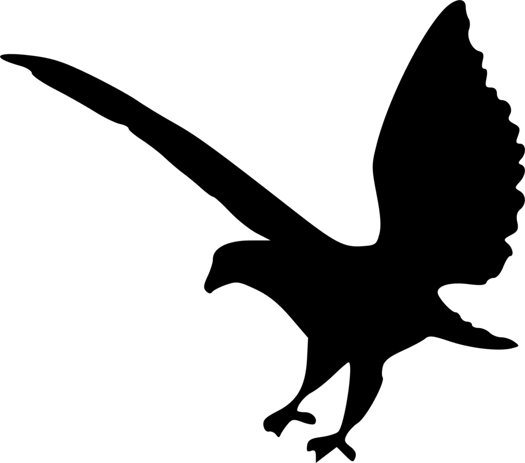 Clipart  Eagle silhouette 2
