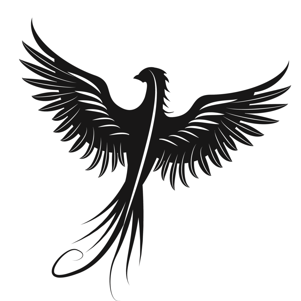 Eagle Silhouette Beak Feather Font  eagle png download