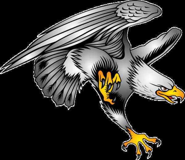 Bald Eagle Symbol Illustration  Eagle Tattoo Designs Clip