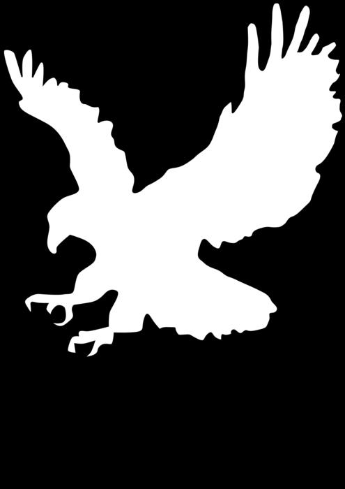 Eagle clipart outline Eagle outline Transparent FREE for