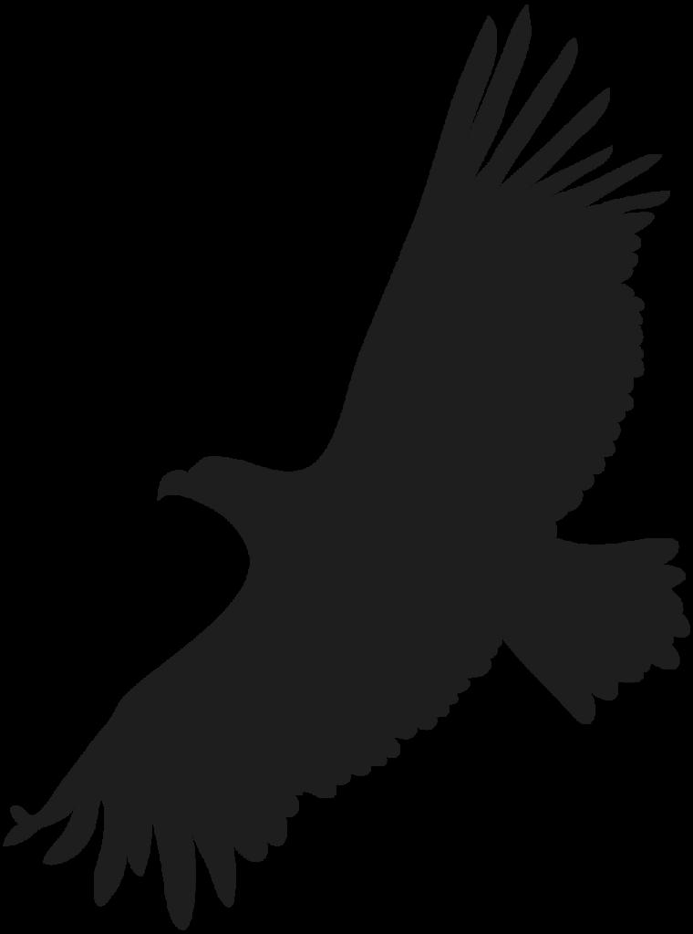 ftestickers bird eagle hawk silhouette