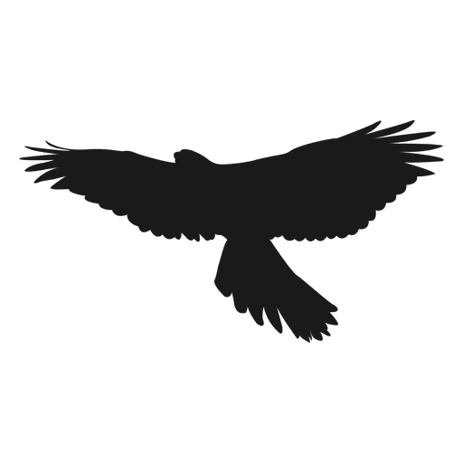 Eagle silhouette  Transparent PNG  SVG vector file