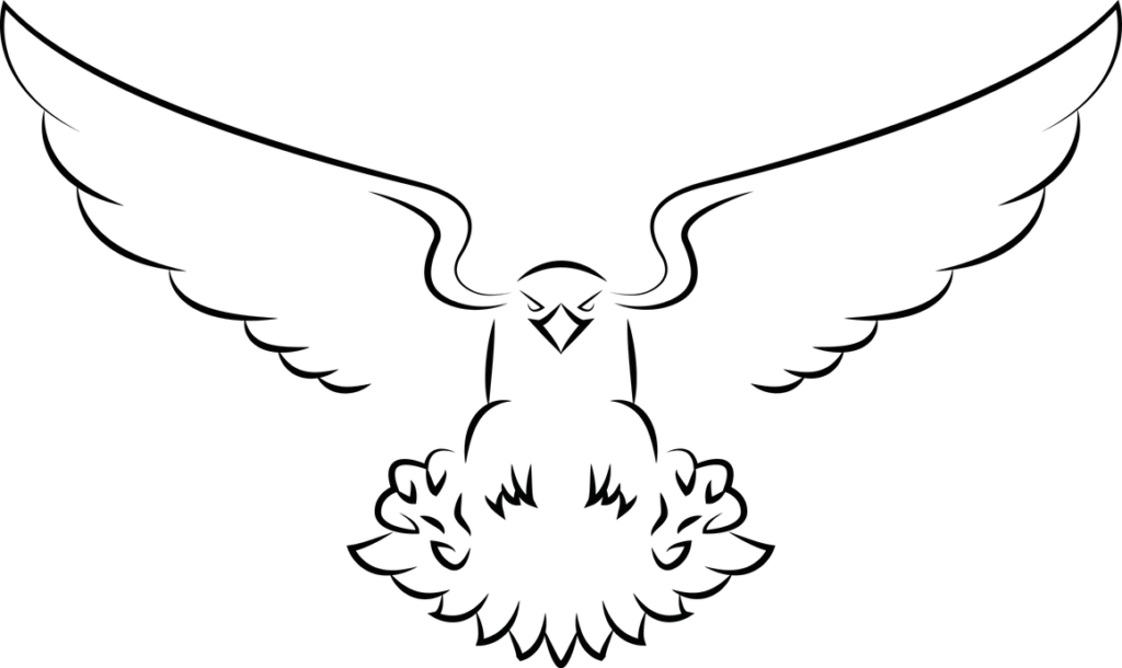 Eagle Vector by httpswwwdeviantartcomsouklin on
