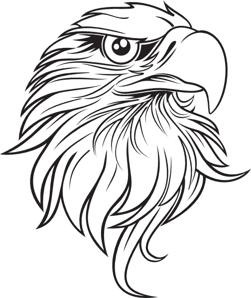 Black and White Cartoon Feather  Large  Eagle drawing
