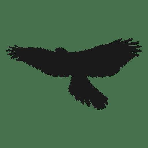 Eagle silhouette AD  affiliate sponsored silhouette