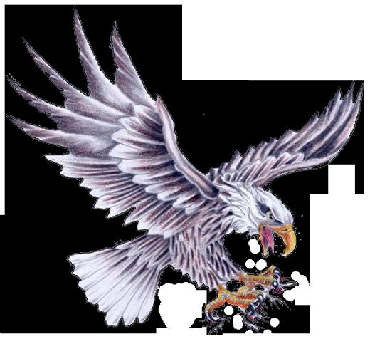 14 Cool Eagle Designs Images  Eagle Feather Tattoo