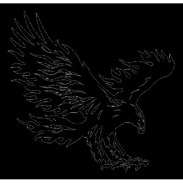 tatouage modele  Recherche Google  Eagle drawing Eagle