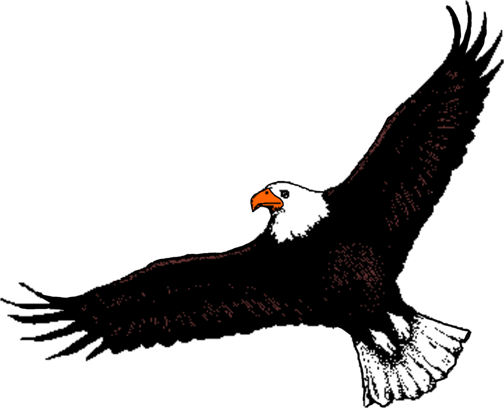 Shoemakerclan Flying Eagle Clipart Black And White