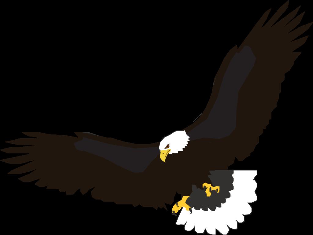 Flying Eagle Clip Art  Clipartsco