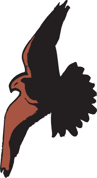 Hawk Flying With Shadow Clip Art at Clkercom  vector