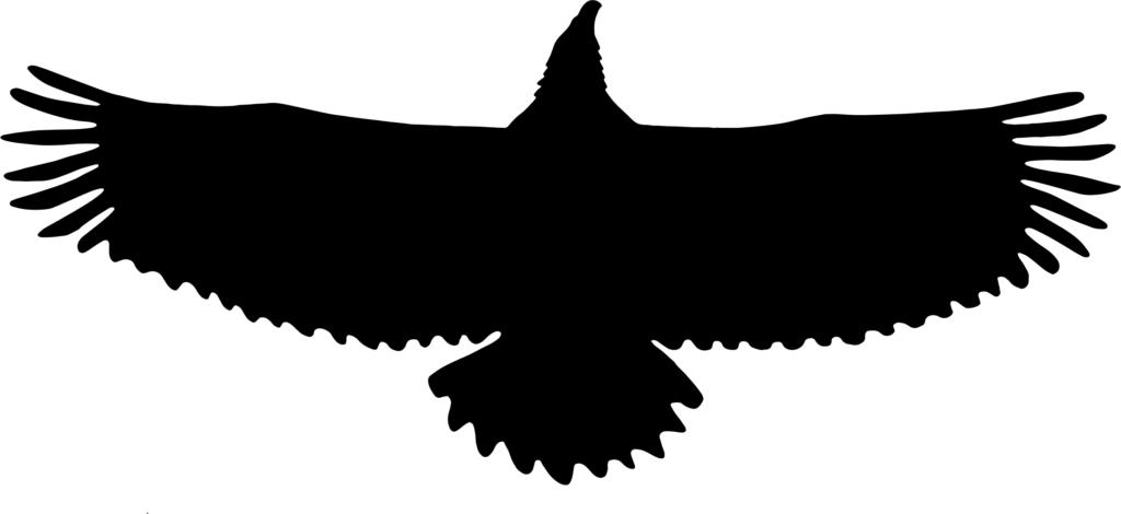 Blackhawk Silhouette at GetDrawings  Free download