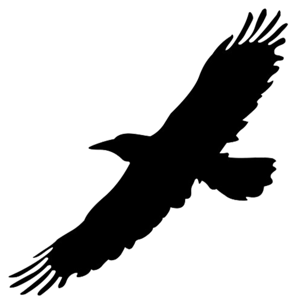 Silhouette Of Bird In Flight Png Swallow Silhouette Png