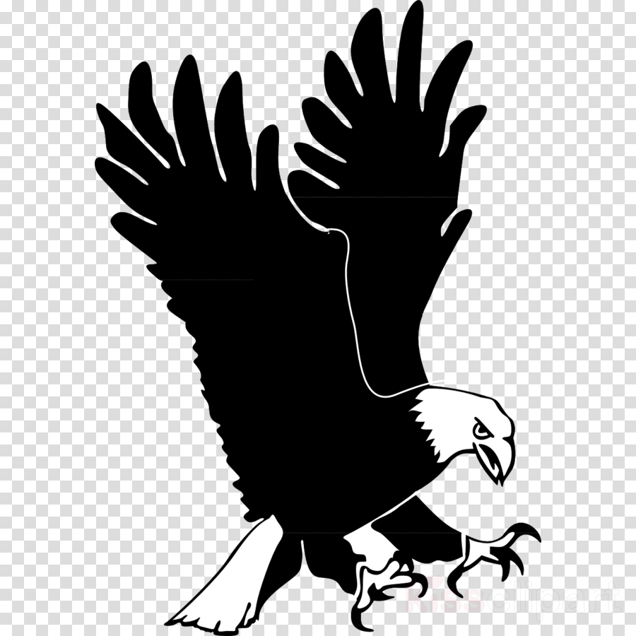 CRMla Eagle Clipart Transparent Background