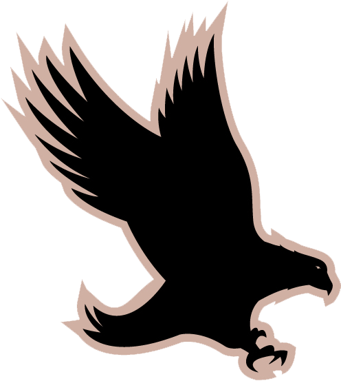 Eagle Hawkeye Jamaica Silhouette Graphics  Security