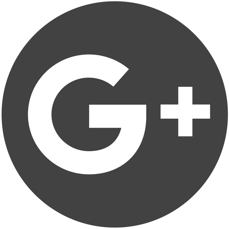 FileIcon Googlesvg  Wikimedia Commons