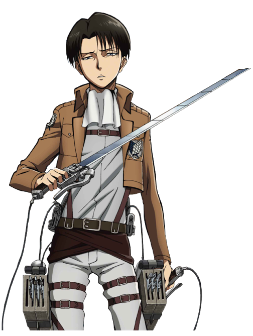 Levi X Reader A mission worth dying for  Chapter 18  Wattpad