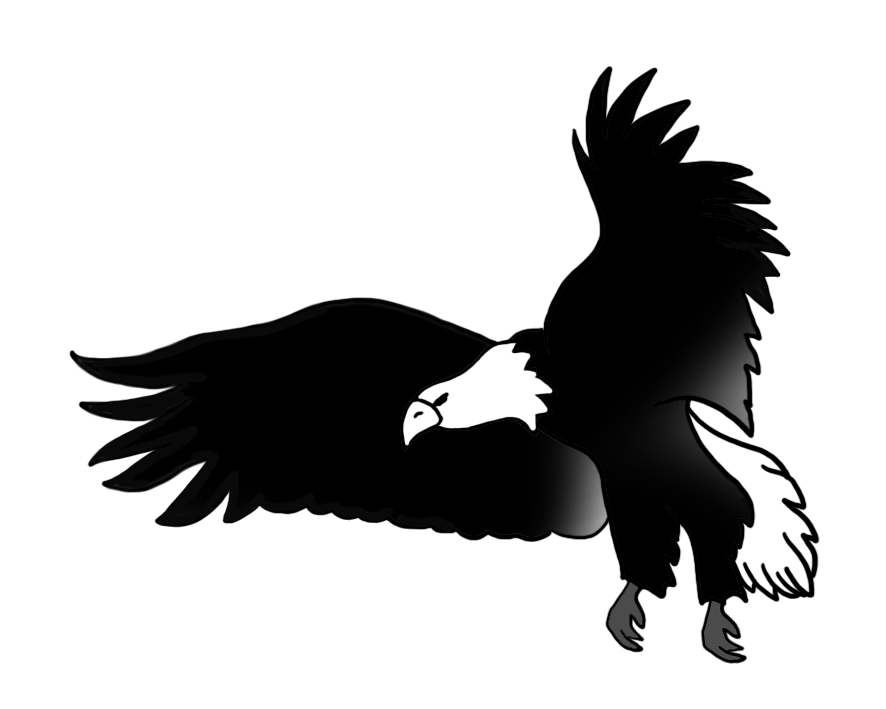 Eagle Black And White Drawing at GetDrawings  Free download