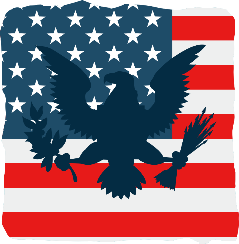 Vector American Flag and Eagle png download  836855