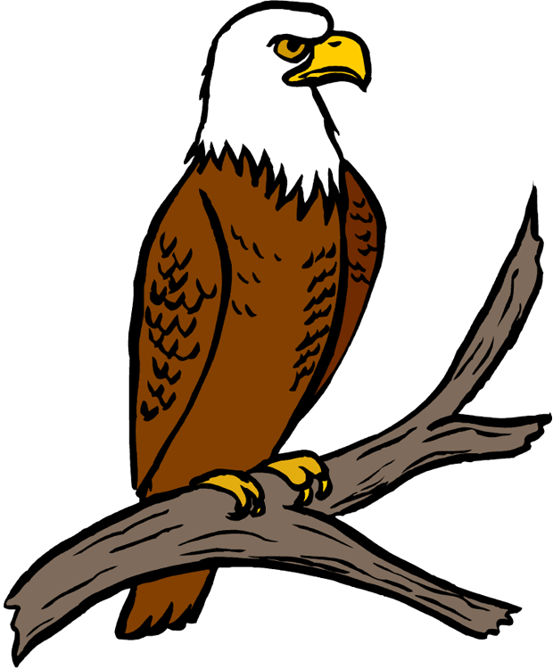 eagle sitting clipart 10 free Cliparts  Download images
