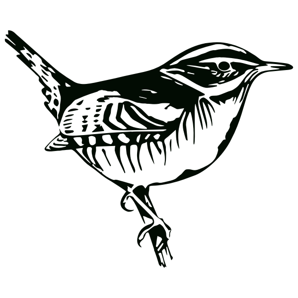 Perched Bird Silhouette  Free SVG