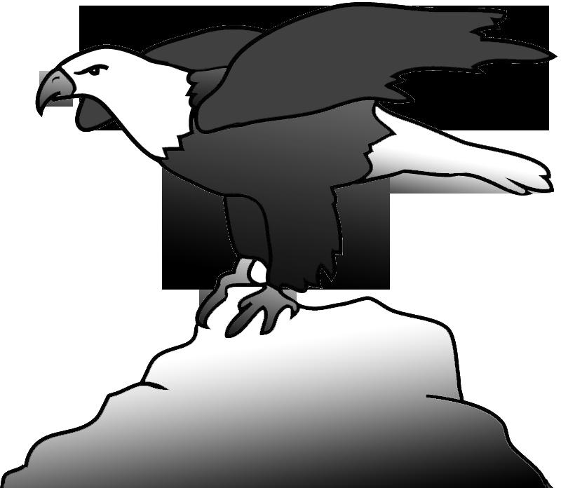 Eagle clipart sketch Eagle sketch Transparent FREE for