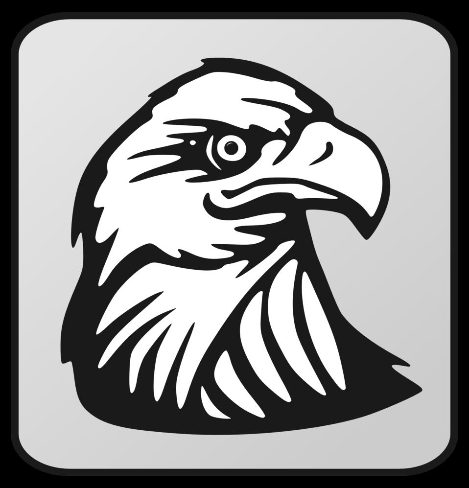 Public Domain Clip Art Image  Eagle Outline  ID