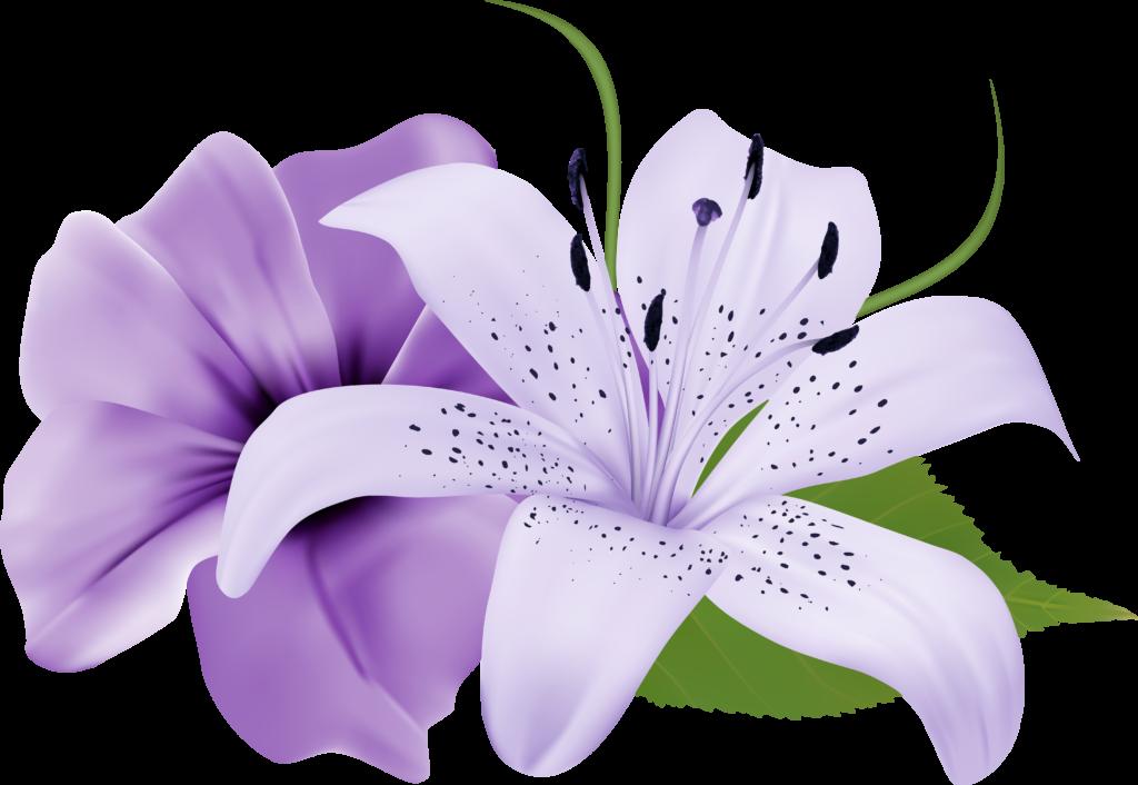 flower png images  Jpg Free Library Purple Flowers