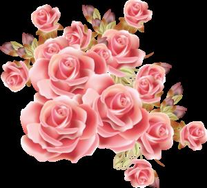 pink rose border png - Free Pink Rose Border Png - Pink ... - Rose Gold Apple Logo