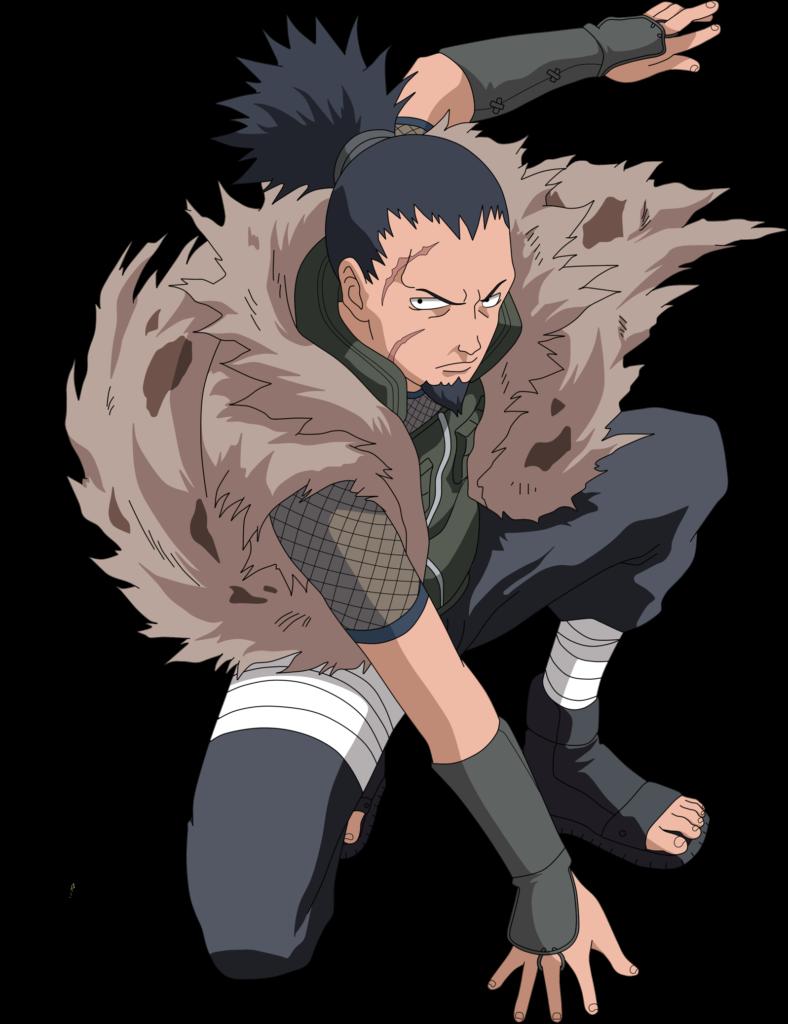 Image  Shikaku Corpo InteiroPNG  Wiki Naruto  FANDOM