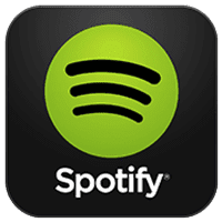x48 Spotify Premium Accounts Limited  Gone Software