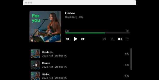 Best Spotify Widget  Add Spotify player plugin to website