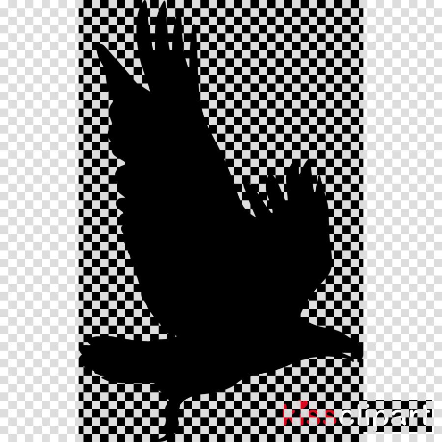 Eagle Silhouette Clipart Bird Eagle Clip Art  Top Hat