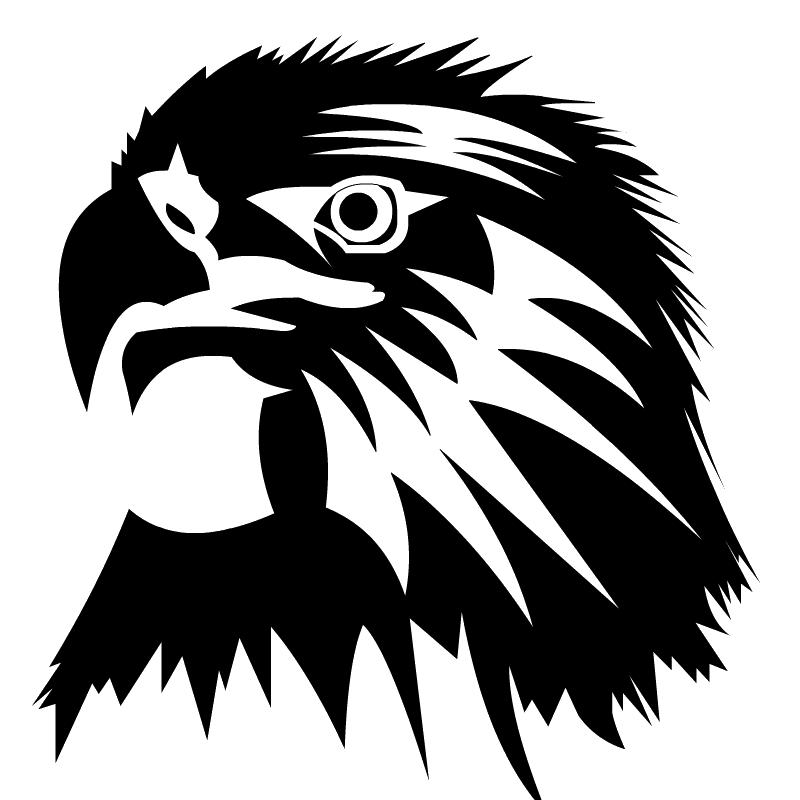 Eagle Clip art  Eagle Head PNG Image png download  800