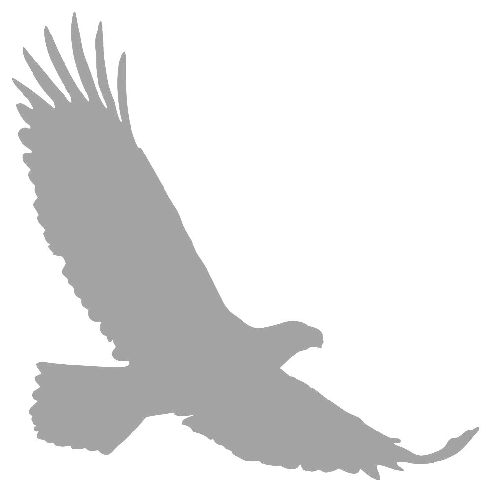 Bald Eagle Silhouette Clip art  eagle png download  997