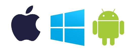 Bespoke Software Development and Application Server for N